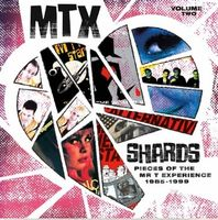 Mr T Experience - Shards Vol. 2