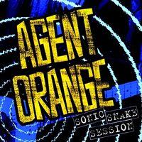 Agent Orange - Sonic Snake Session (2 Cd) (2016 Reissue) [Reissue]