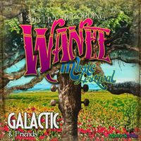 Galactic - Live From Wanee 2013