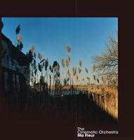 Cinematic Orchestra - Ma Fleur (Dig)