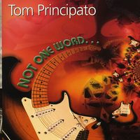 Tom Principato - Not One Word