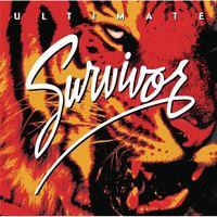 Survivor - Ultimate Survivor
