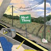 Frankie Cosmos - Next Thing [Vinyl]