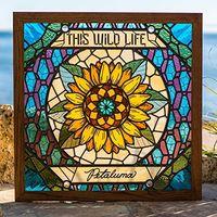 This Wild Life - Petaluma [LP]