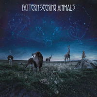 Pattern-Seeking Animals - Pattern-Seeking Animals (Dig)