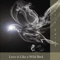 Chris Smith - Love Is Like a Wild Bird