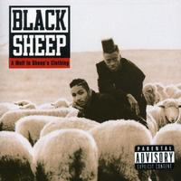 Black Sheep - Wolf in Sheep's Clothing