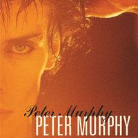 Peter Murphy - 5 Albums