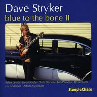 Dave Stryker - Blue to the Bone 2