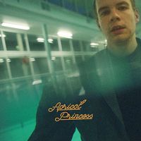 Rex Orange County - Apricot Princess [Limited Edition Orange LP]