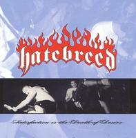 Hatebreed - Satisfaction Is the Death of Desire