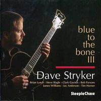 Dave Stryker - Blue To The Bone III