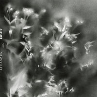 Jacaszek - KWIATY