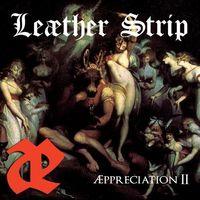 Leather Strip - Appreciation Ii