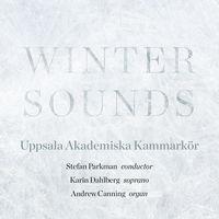 Academy Chamber Choir of Uppsala - Winter Sounds