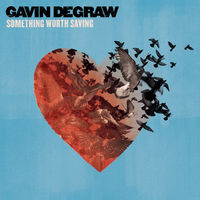 Gavin Degraw - Something Worth Saving
