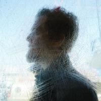Glen Hansard - Didn't He Ramble [Vinyl]