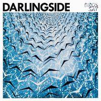 Darlingside - Birds Say [Vinyl]