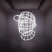 DJ Shadow - Reconstructed: The Best Of Dj Shadow: Deluxe [Import]