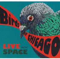 Birds of Chicago - Live from Space