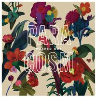 Washed Out - Paracosm