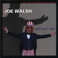 Joe Walsh - Look What I Did (Anthology)