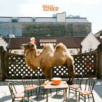 Wilco - Wilco (The Album) [Picture Disc LP]