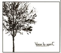 Voice To Spirit - Songs For A Broken City