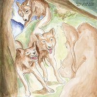 Bonnie 'Prince' Billy - Wolf Of The Cosmos [LP]