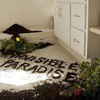 Ben Levin - Invisible Paradise