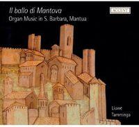 Tamminga - IL Ballo DI Mantova: Organ Music In S. Barbara, Mantua