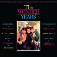 Various Artists - The Wonder Years: Music From The Emmy Award-Winning Show And Its Era [LP]