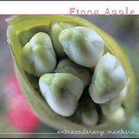 Fiona Apple - Extraordinary Machine