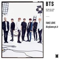 BTS - FAKE LOVE / Airplane pt.2 [Making Of Documentary][CD/DVD]