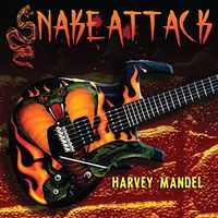 Harvey Mandel - Snake Attack