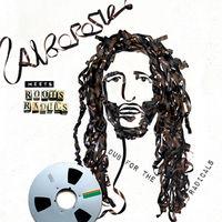 Alborosie - Alborosie Meets Roots Radics - Dub For The Radicals