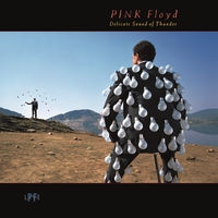 Pink Floyd - Delicate Sound Of Thunder (Live) [LP]