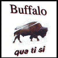 Quatisi - Buffalo