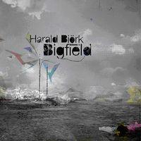 Harald Björk - Bigfield