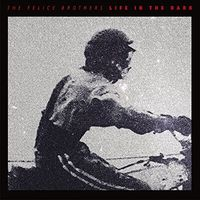 The Felice Brothers - Life In The Dark [Vinyl]