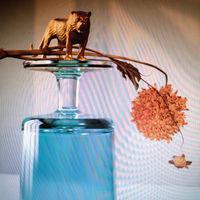 Beirut - Gallipoli [Indie Exclusive Limited Edition LP]