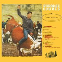 Parquet Courts - Light Up Gold [Download Included]