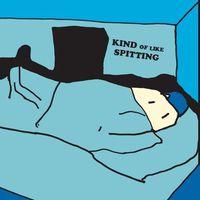 Kind Of Like Spitting - One Hundred Dollar Room