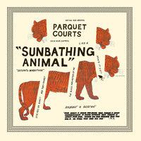 Parquet Courts - Sunbathing Animal + Content Nausea