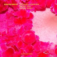 Barry Guy - Brainforest [Import]