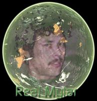 William Mylar - Real Mylar