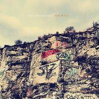 Kris Delmhorst - The Wild