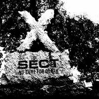 Sect - No Cure For Death