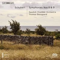 K Riisager - Symphony Nos 8 & 9