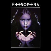 Phenomena - Phenomena